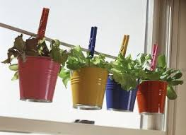 Grow one pot even in the tightest of places!