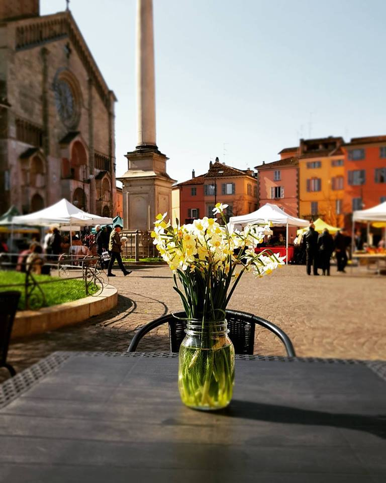 Spring in the duomo in Piacenza, Italy with daffodils