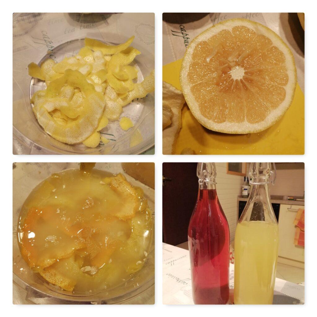 grapefruit gin collage 2